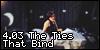 4.03 The Ties That Bind