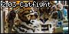 2.03 Catfight