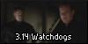3.14 Watchdogs